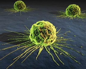 Ceelulas-tumorales-circulantes-CTC